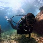 PADI Discover Scuba Diving (With Ocean Dive)